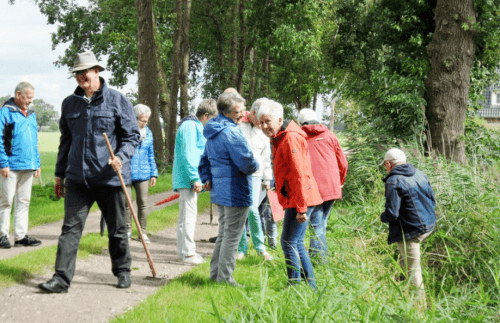Levensgenieters 55+